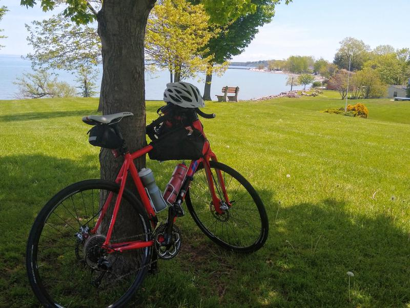 Bike under a tree at Sodus Point